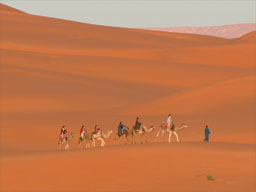 Morocco desert camel ride on our tours to Morocco Berber Treasures Morocco travel to Morocco