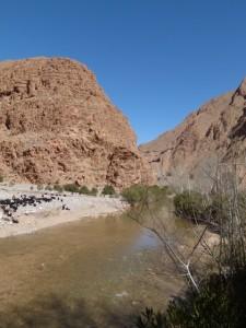 © Berber Treasures Morocco Tours 2011