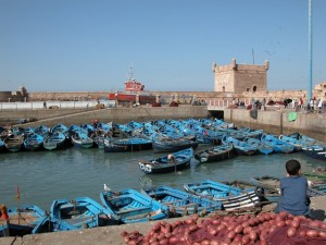 Many of our small group tours of Morocco travel to Essaouira.